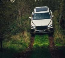 Bentley Bentayga V8  …تكسب لقب أكثر SUV فخامة للعام